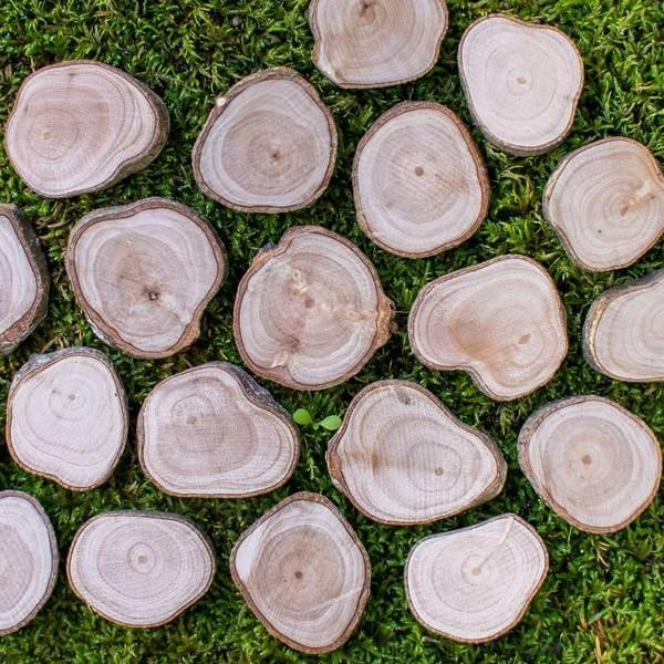 rodajas de madera de olivo